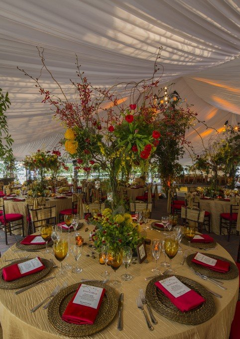 Tabletop details include rattan chargers, golden crinkle table linens, custom amber water goblets, rattan charger plates and branch motif custom printed menus. Elegant golden crinkle bows finished the chair design adding a flavor of elegance to the setting.